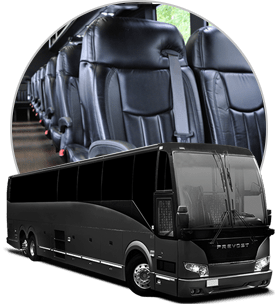 Limo Buses & Coaches